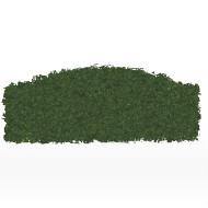 Hedge Arc half