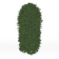 Hedge S6