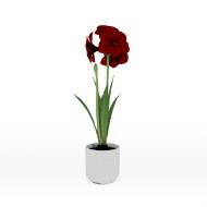 Crimson Flower