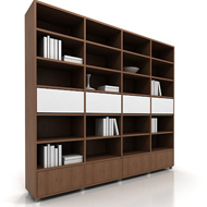 Lecco Bookshelves 3 w books