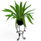 leafy potted plant with stand