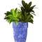 Potted plant 45